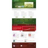 红色、绿色商业模板