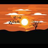 夕阳落日风景